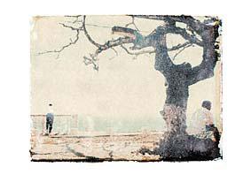 carte postale de Alain-Marc